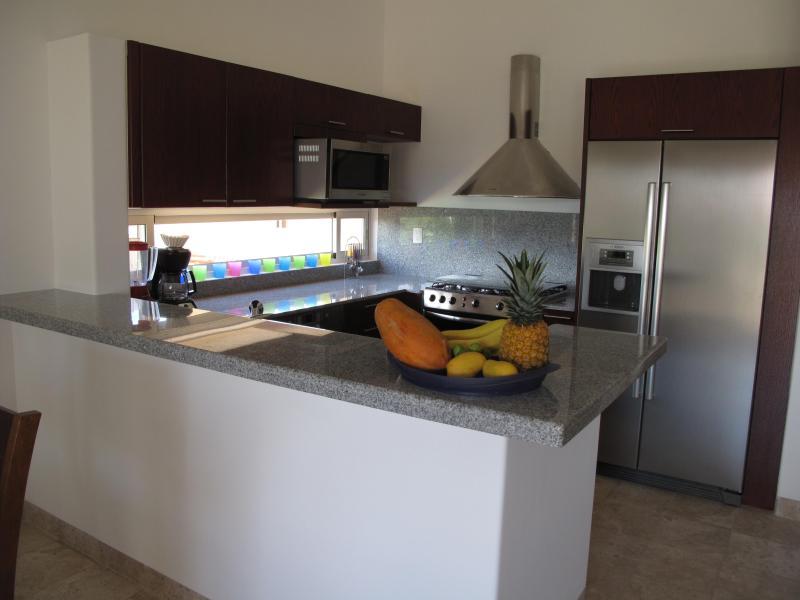 brilhante e moderna cozinha com fogão completo, frig, microondas, máquina de lavar louça, garborator, mesa de contador