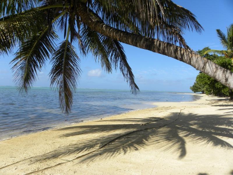 la plage devant Piment vanille