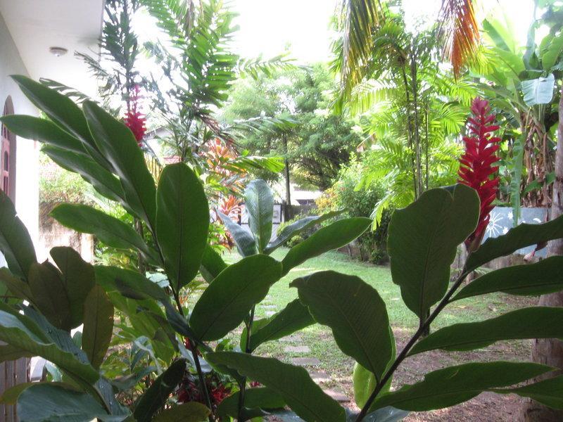 Tropical Garden Laguna Villa Beruwala