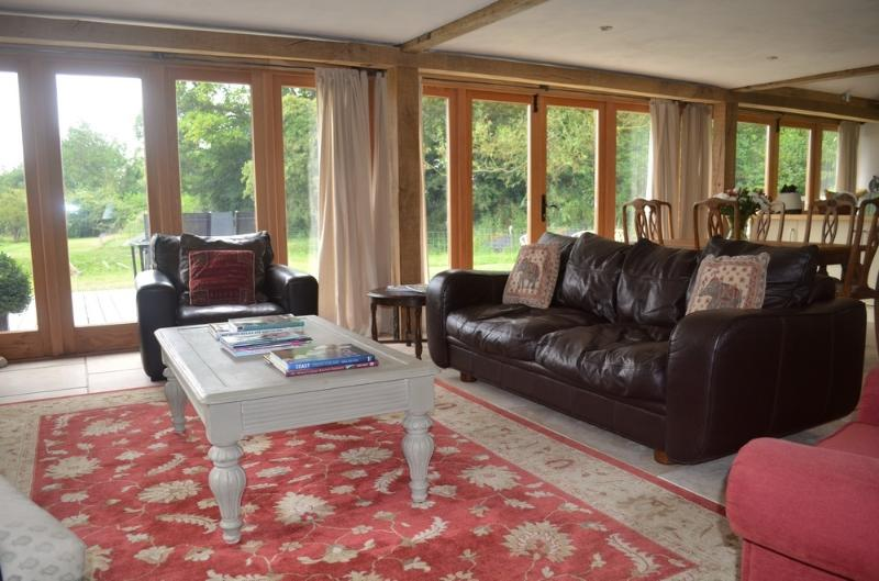 Comfortable living room with TV, DVD & docking station