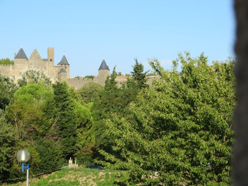 the Medieval city 'LA CITE'  view from the windows of the living room : Heritage and Nature ***