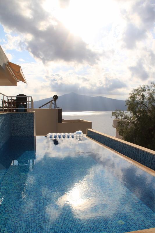 Pool view Daytime