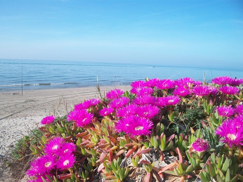 The 19 km long sandy beach of Riviera di Sorso is nearby
