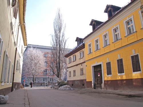 Apartment VIKTORIJA - neighbourhood
