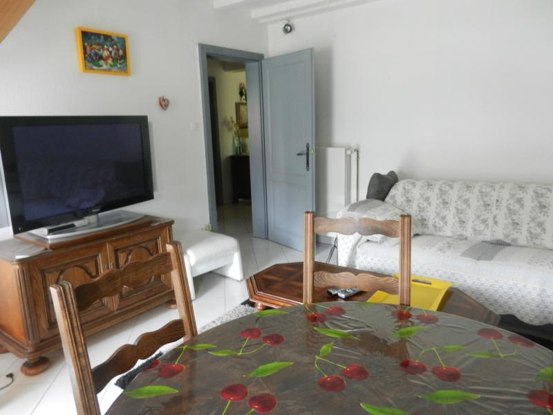 Appartement + Jardin COLMAR, vacation rental in Biesheim