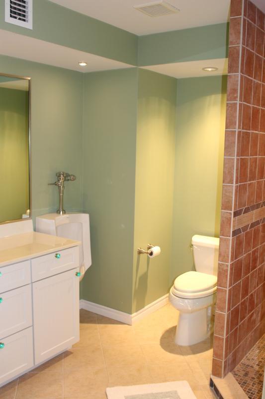 Ground floor bedroom en suite bathroom
