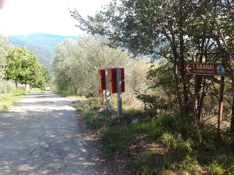 Private road for agriturismo I Granai