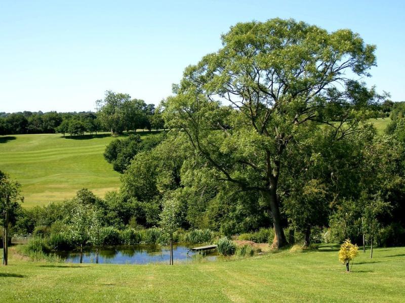 Ver a través de golf