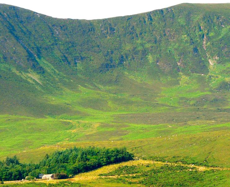 Barralach sheep farm on its extensive land