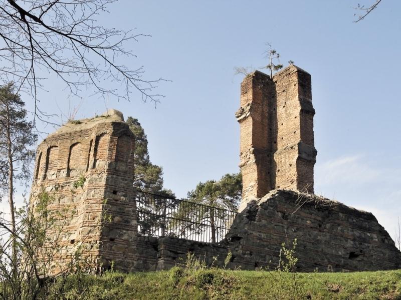 Sân Nicoara ruins