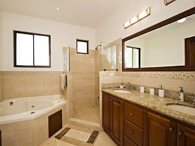 Master bathroom with shower & jacuzzi, and walk-in closet