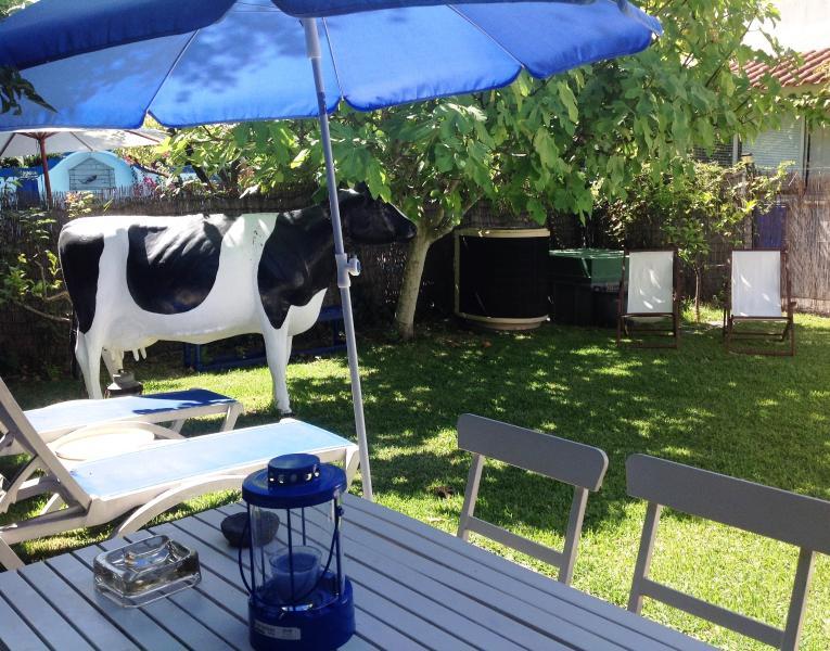 Le jardin avec la 'fausse' vache