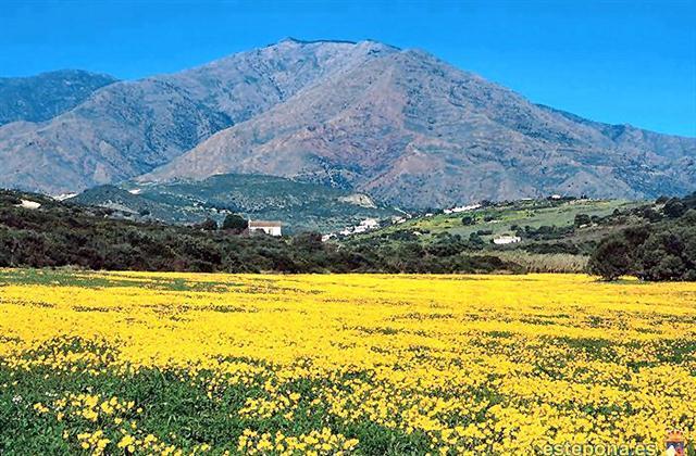 Sierra Bermeja Mountain to rear of Apartment