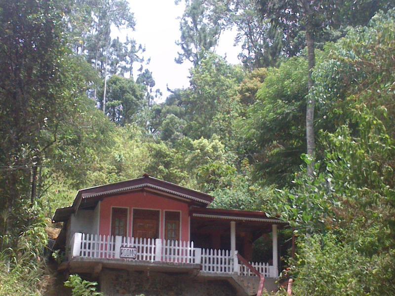 Rustle Hill Home Stay-Ella, vacation rental in Hiniduma