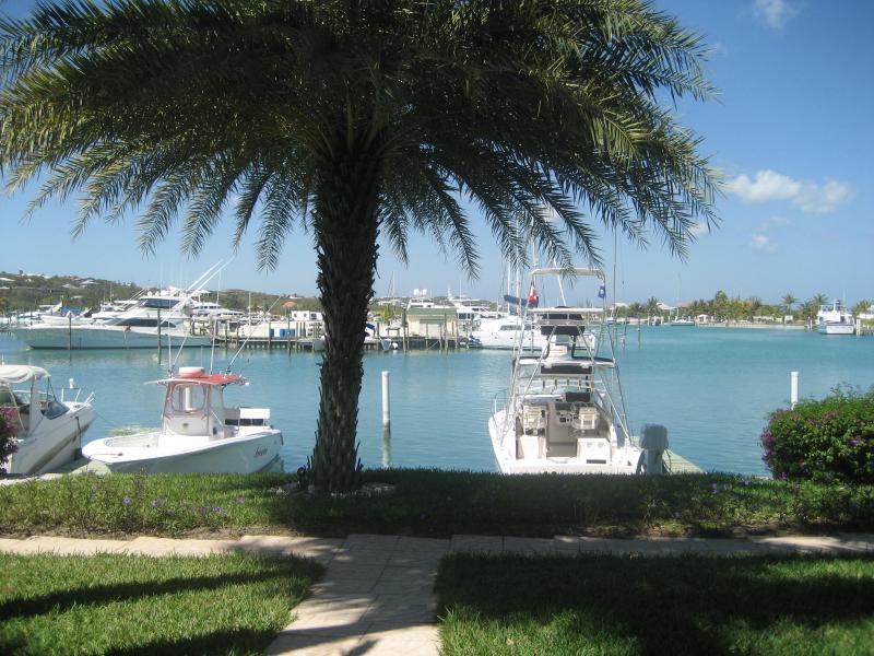 Barche su ormeggi Yacht Club