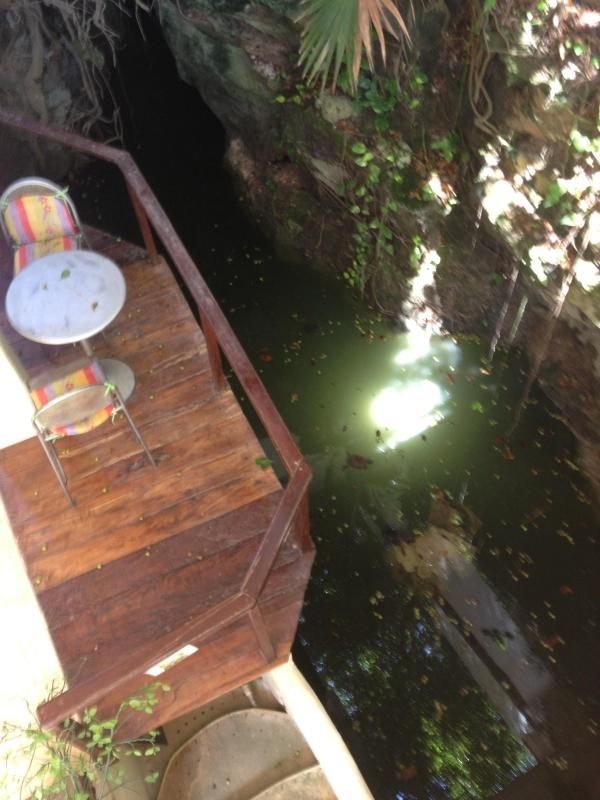 Fresh water Cenote on each side of Condo - watch Turtles swin