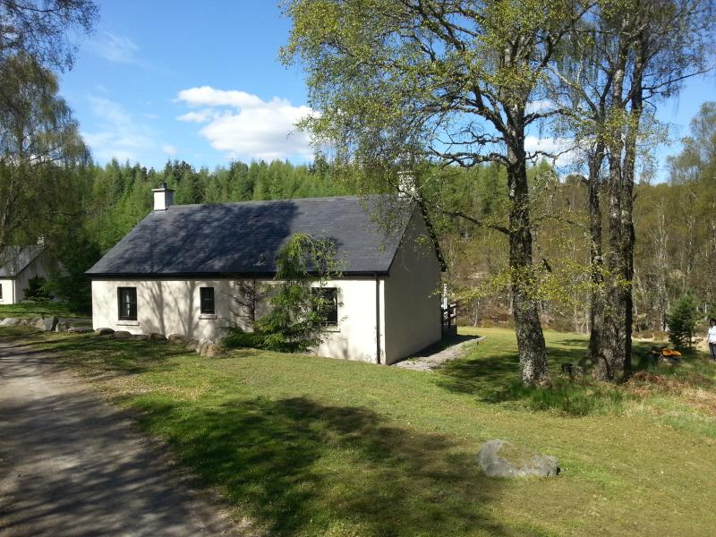 Beautiful scenery around the cottage