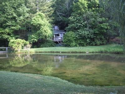 Watch the family of ducks or catch some trout at the many ponds and rivers!