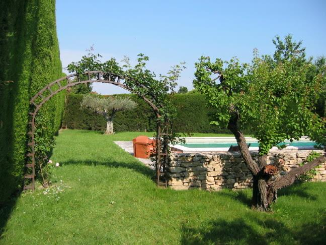 Pool, from the orchard
