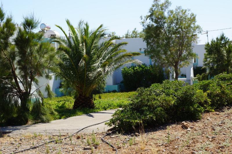 The garden of Notos villas