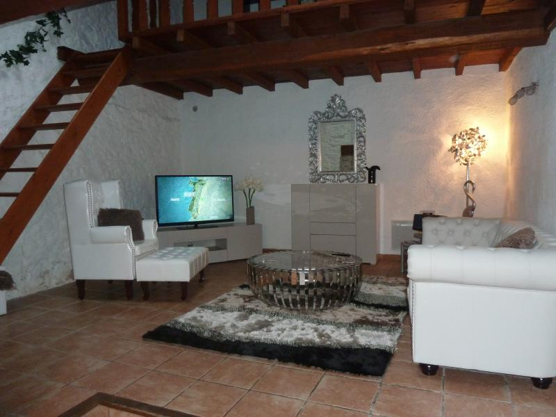 MAISON 100 M2 A LA CAMPAGNE  20 MNS DE CARCASSONNE, holiday rental in Saint Martin de Villereglan