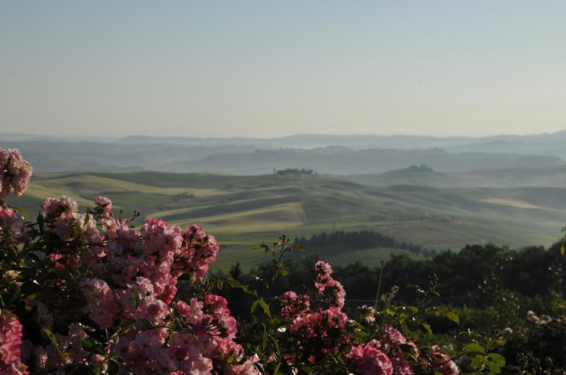 Fonte Aulente Montalcino, vacation rental in Montalcino