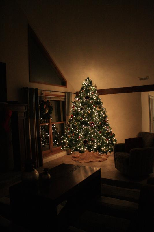 Christmas Tree at Night (Decemeber)