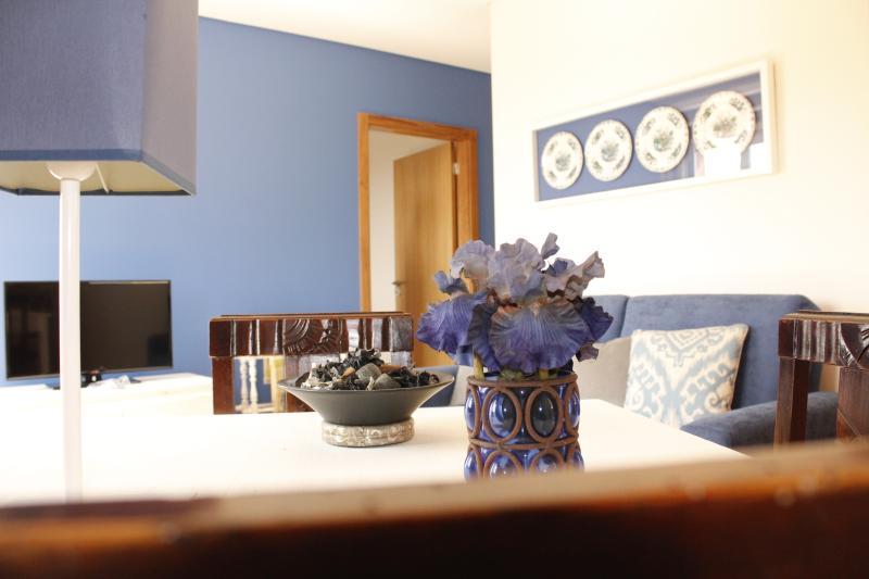 Casa da Nininha - T1 Azulão, vacation rental in Vale de Cambra