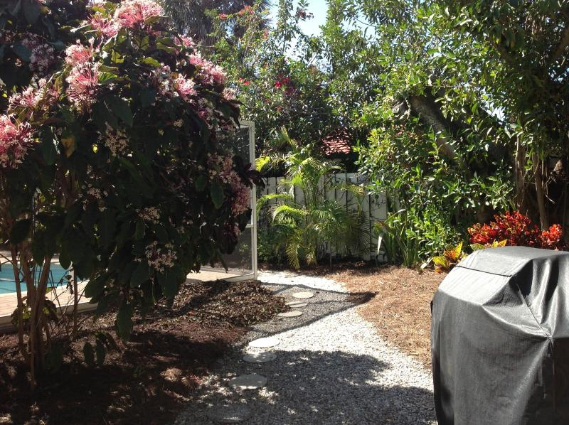 Parrilla de gas y follaje tropical en la zona del jardín