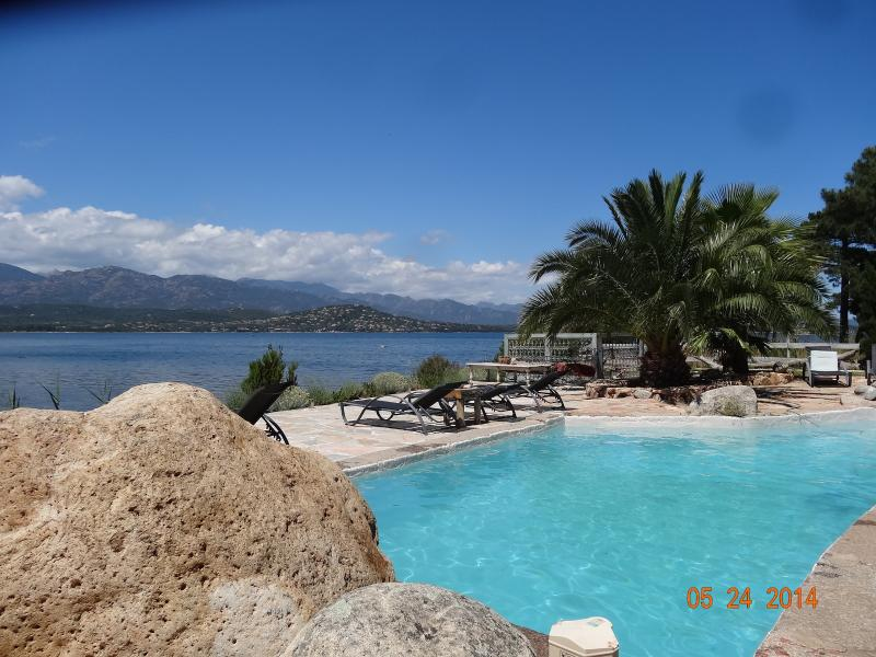 grande piscine devant la mer, chaises longues