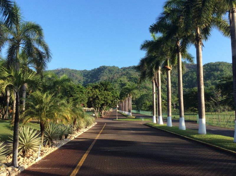 The Main Road of Los Delfines