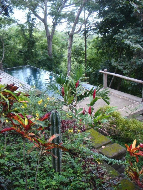 shared pool during green season