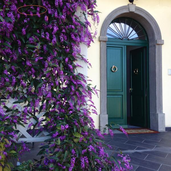Appartamento VERDE - in Elegante Villa al centro della Toscana, alquiler vacacional en Sasso Pisano