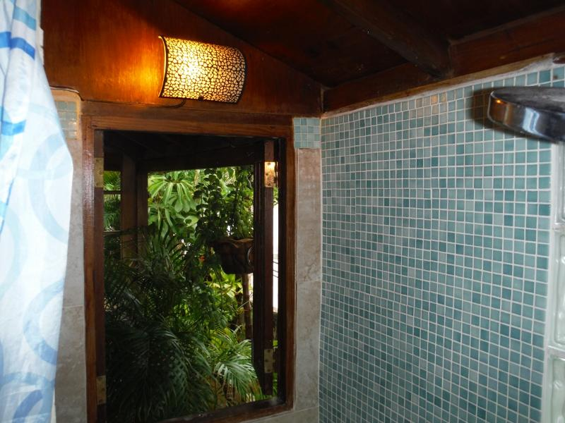Shower opens out to terrace garden.