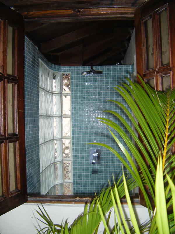 your shower seen from outside - don't worry, its still very private!
