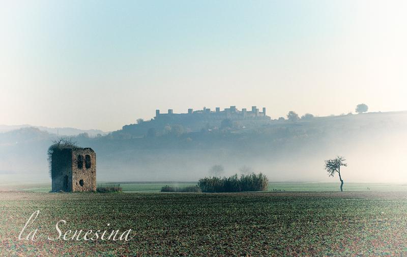 paysage Monteriggioni