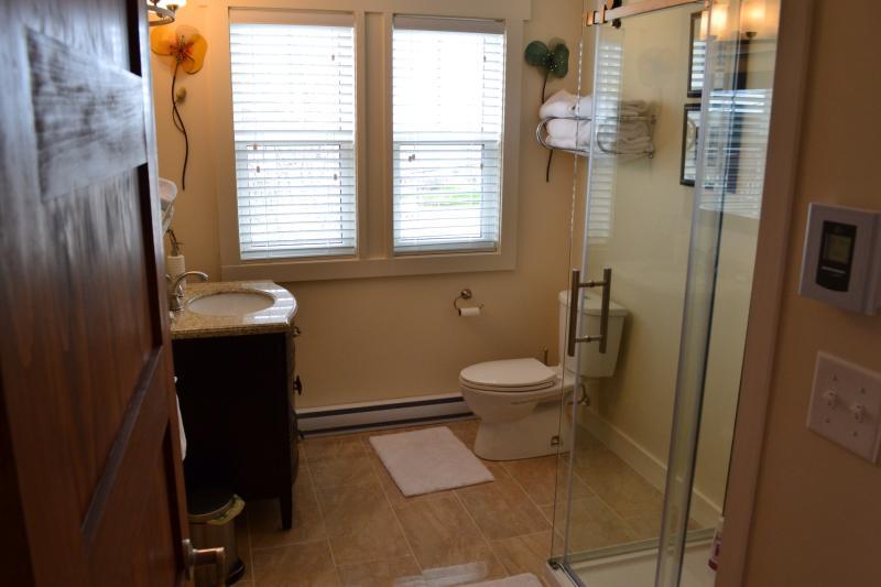 Baño principal de lujo con la vanidad del granito y azulejos personalizados