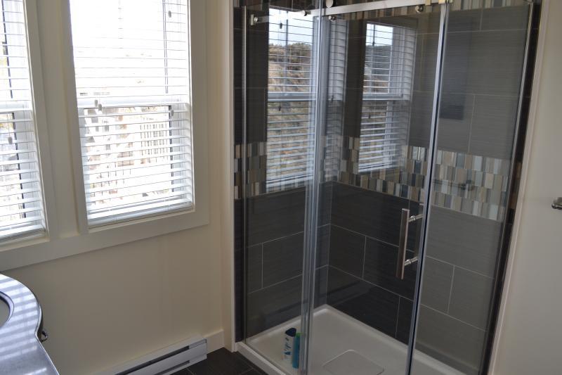 Maestro cristal ducha con azulejos personalizados