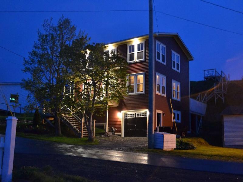 Vista de la casa con la cubierta superior del nido del cuervo en la parte trasera de la noche
