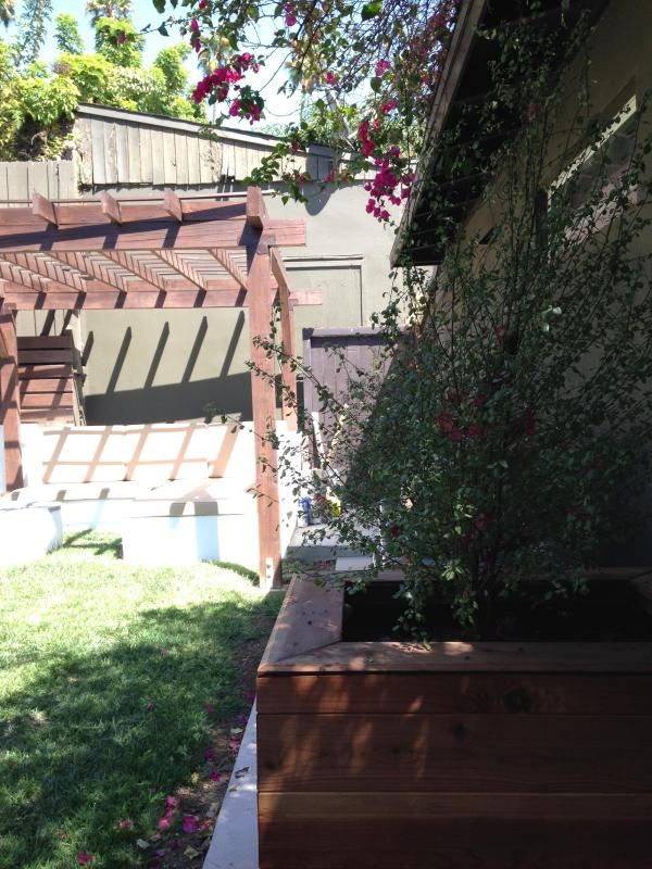 another view of backyard