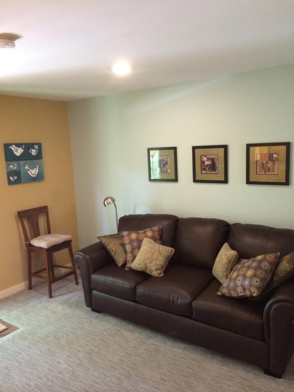 Livingroom (with couch that folds out into queen-size bed). Located just opposite of the kitchen.