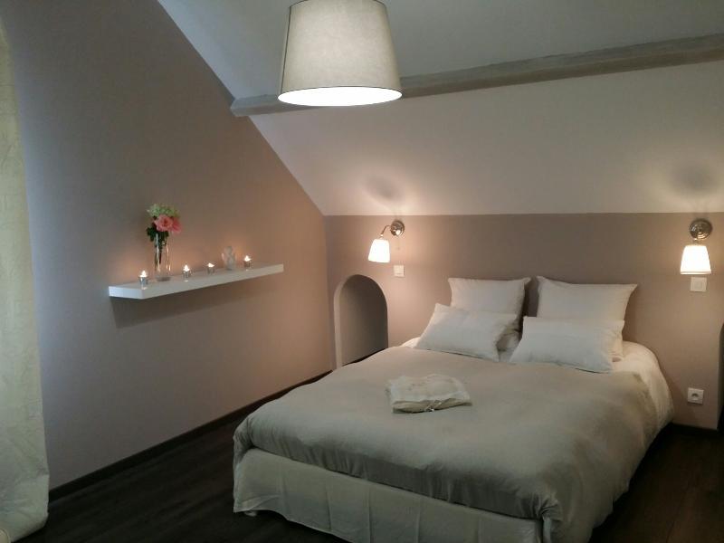 chambres d'hôtes des Demoiselles, vacation rental in Vernou-la-Celle-sur-Seine