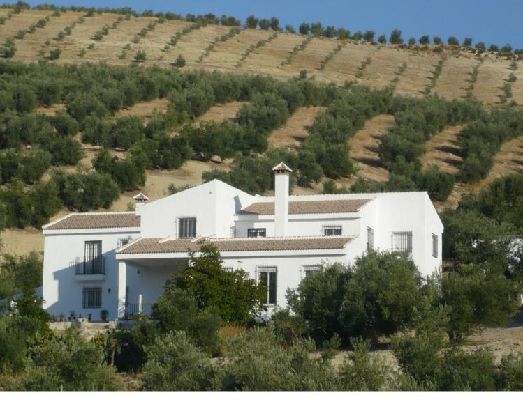 Cortijo Las Montoras, located in the andalucian rural countryside, relaxation, peace and tranquility