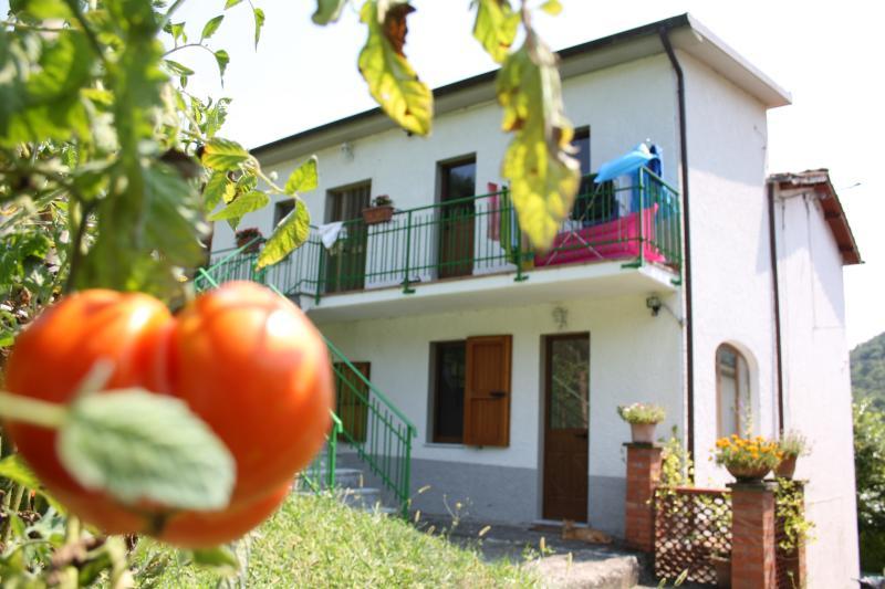 il pradaccio, holiday rental in Vergemoli