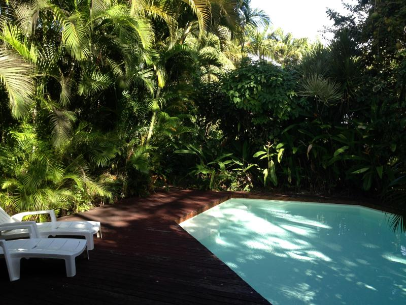 Villa de charme, pool and garden, on the beach ..., vacation rental in Sainte Rose