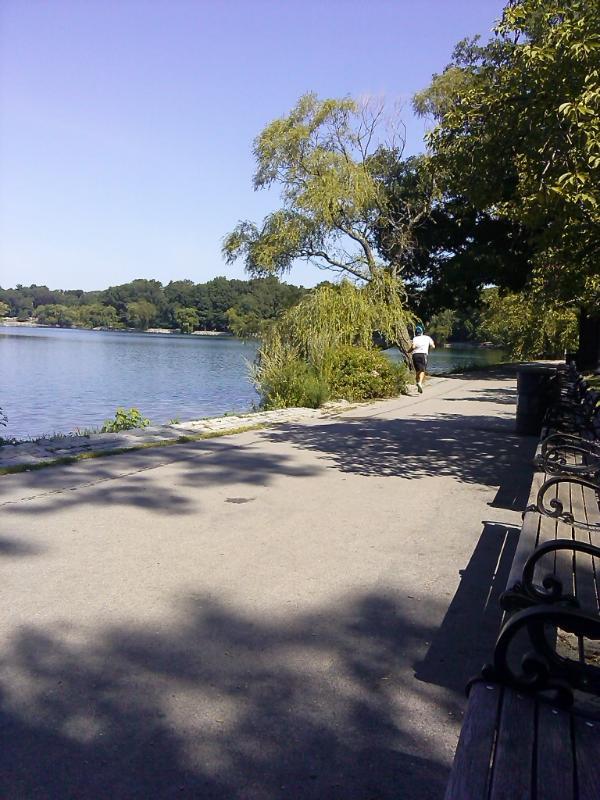 Jogging on Jamaica Pond