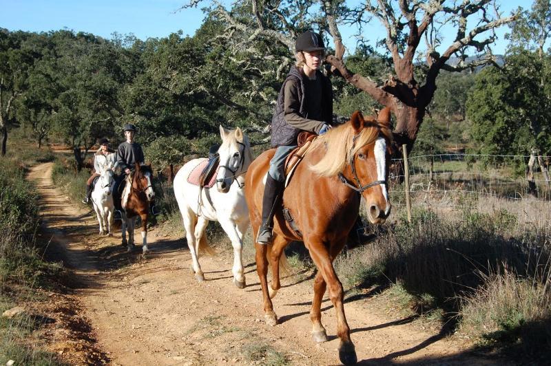 Paardrijden op Natasha's ...
