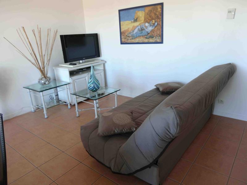 Séjour avec canapé-lit (sofa), TV, DVD, Wifi et Satellite