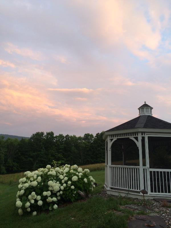 gazebo, hydrangea and sunset