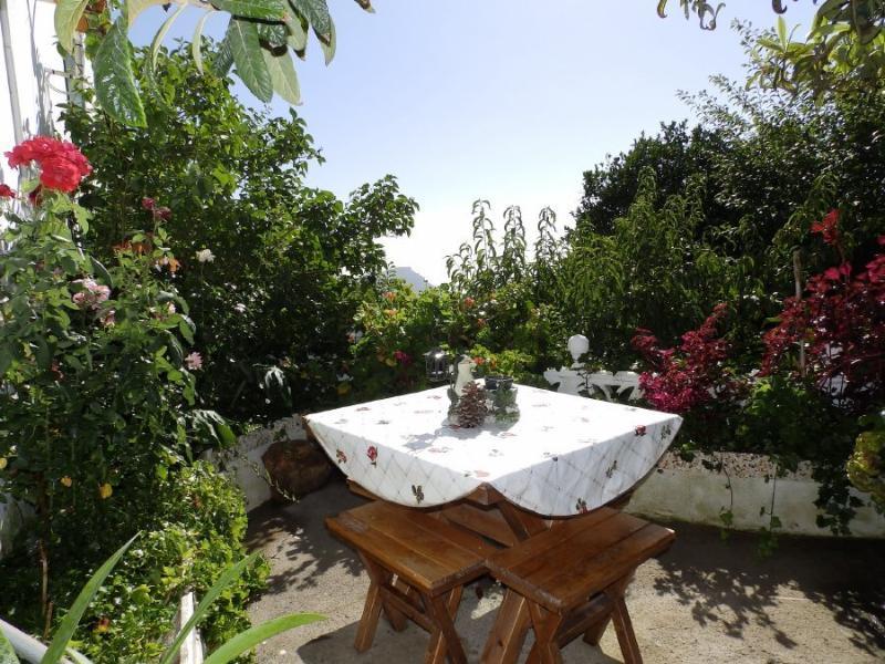 Casa Rural con wifi y barcaboa en Vilaflor, casa vacanza a Vilaflor